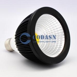 LED SPOT COB 12W PAR30