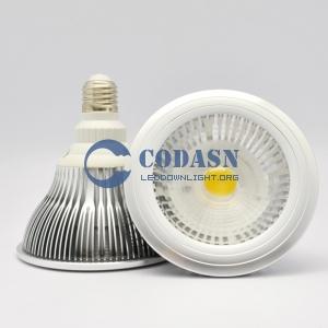 LED SPOT COB 15W PAR38