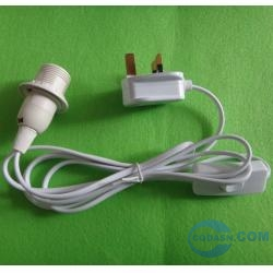 UK plug with switch and E14 lamp holder